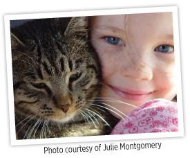 Cat_JMontgomery2