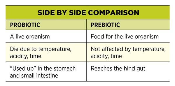 Prebiotics Vs Probiotics Which Do You Need For Your