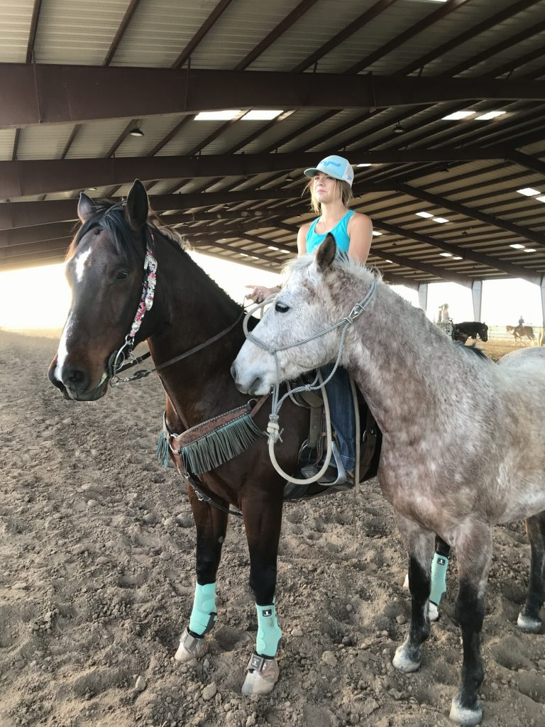 Chex, barrel horse and Reno, rope/breakaway horse